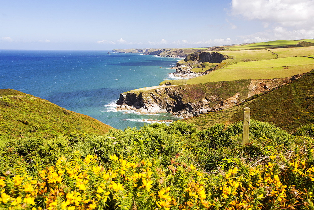 Coastal scenery on the South West Coast Path, East of Port Isaac, Cornwall, UK.