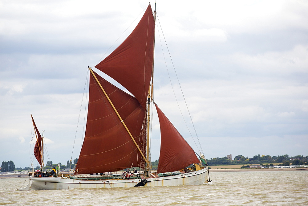 Traditional wooden Smack fishing boats off Brightlingsea, Essex, UK. - 911-10870