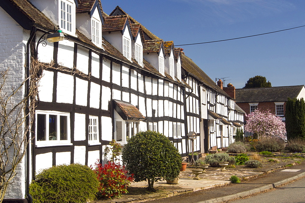 An ancient medieval Tudor timber framed house in Dilwyn, Herefordshire, UK.