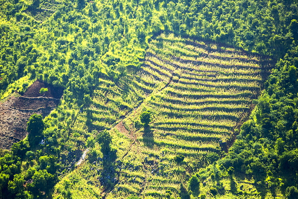 Looking down on deforested forest slopes from the air, being replaced by farmland for subsistence agriculture in Malawi. The country is suffering rapid deforestation, to provide both land for farming, and for making charcoal, the main cooking fuel in Malawi.