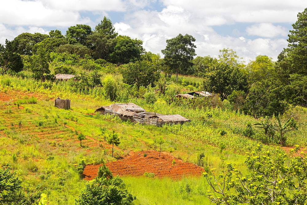 A farmstead on the zomba plateau which has been heavily deforested to provide a rapidly increasing population with land.