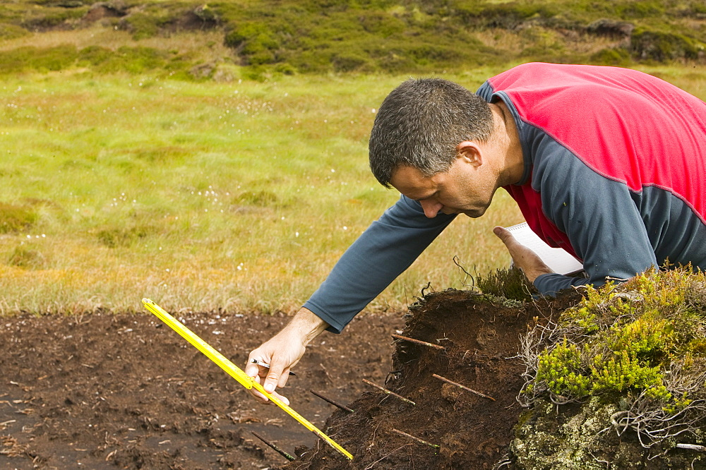 A scientist looking at peat erosion in the north Pennines, Cumbria, England, United Kingdom, Europe