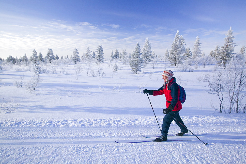 A woman cross country skiing near Saariselka, Northern Finland, Scandinavia, Europe