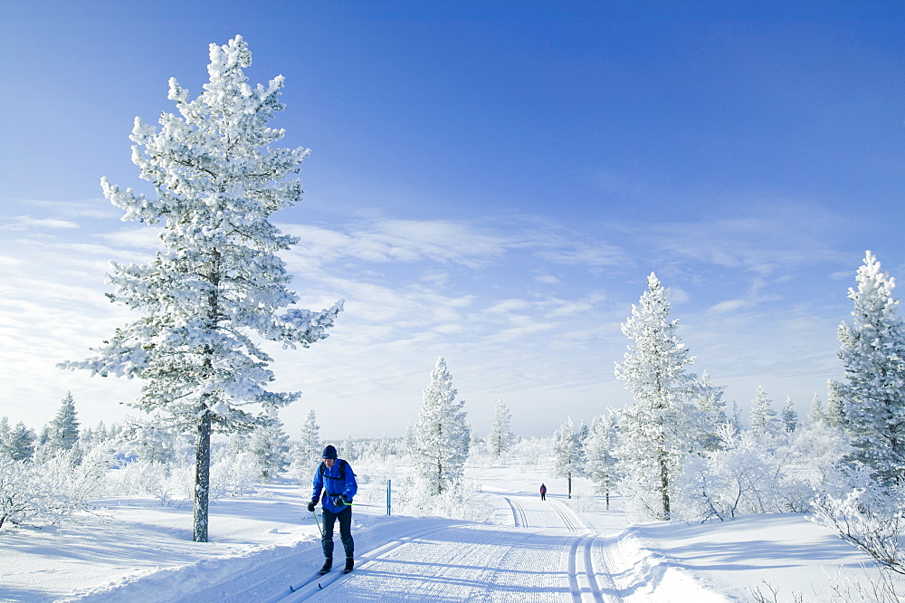 A man cross country skiing near Saariselka, Northern Finland, Scandinavia, Europe