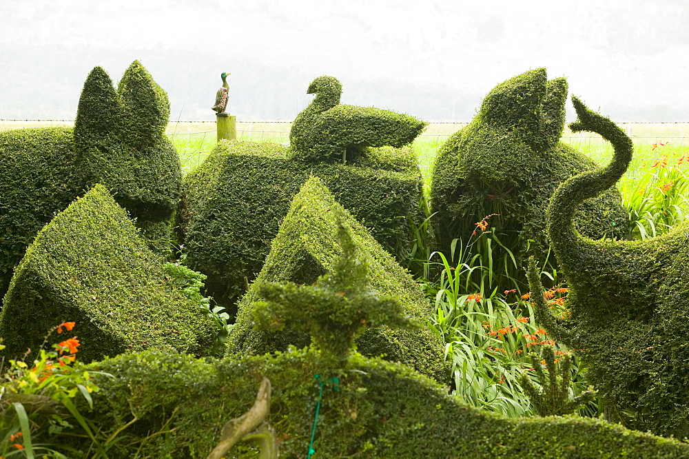 Topiary bushes on a caravan park near Kendal, Lake District, Cumbria, England, United Kingdom, Europe