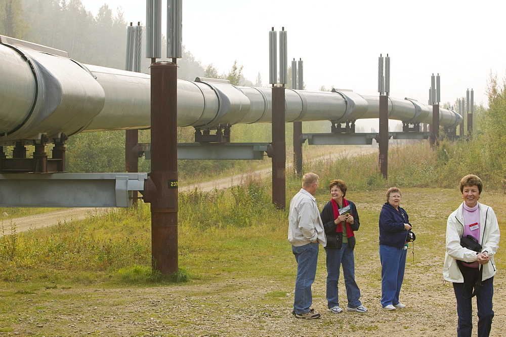 The Trans-Alaskan oil pipeline near Fairbanks, Alaska, United States of America, North America