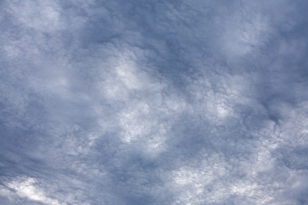 Clouds on an occluded front
