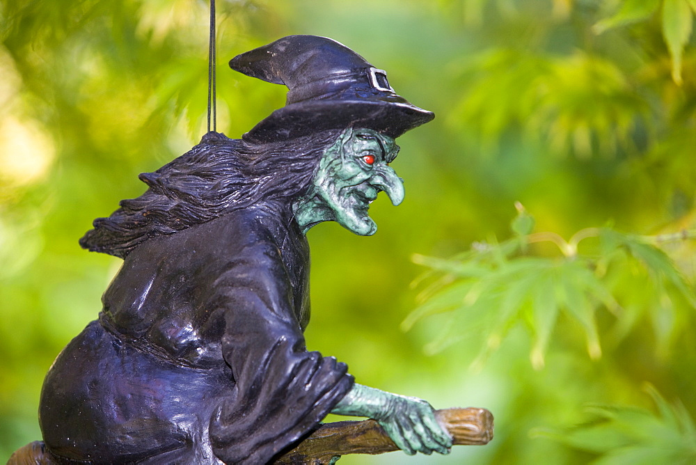 The Halloween trail at Thorp Perrow Arboretum in Yorkshire, England, United Kingdom, Europe - 911-3000
