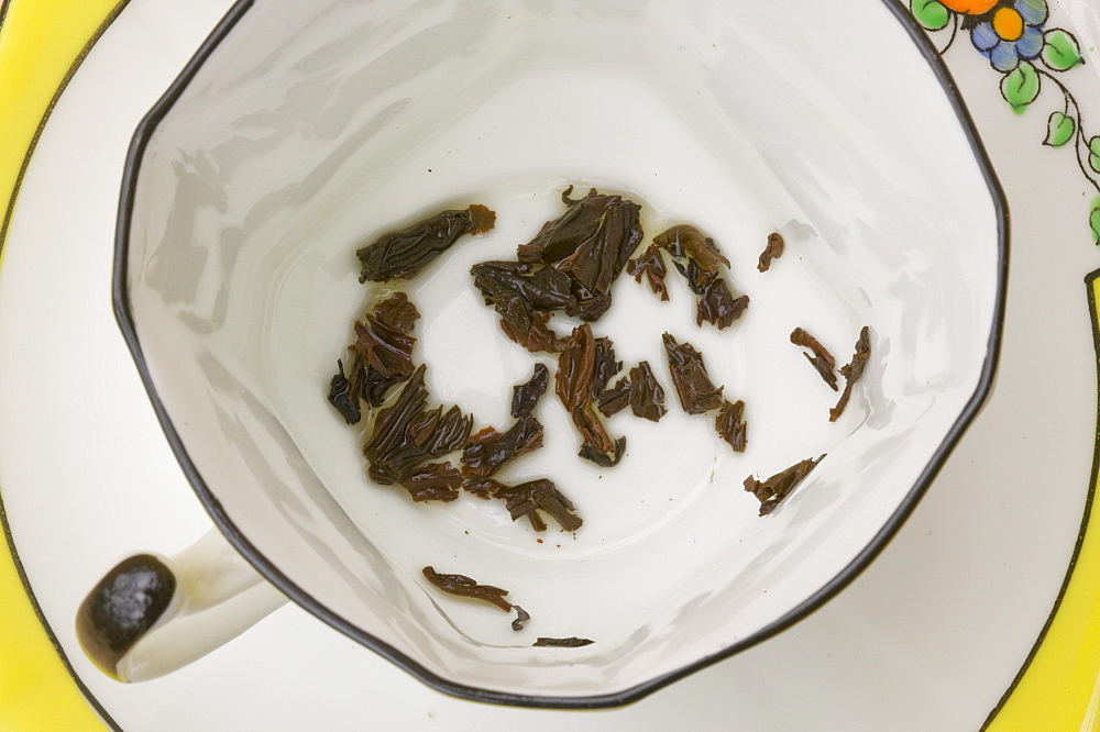 Tea leaves in a china cup