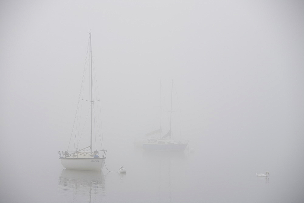 Mist over Lake Windermere in the Lake District National Park, Cumbria, England, United Kingdom, Europe