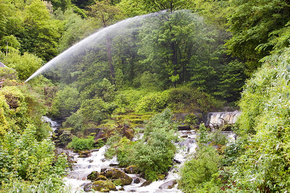 Water spouts below the largest privately owned HEP scheme in England and Wales, Glen Lyn Gorge in Devon, England, United Kingdom, Europe