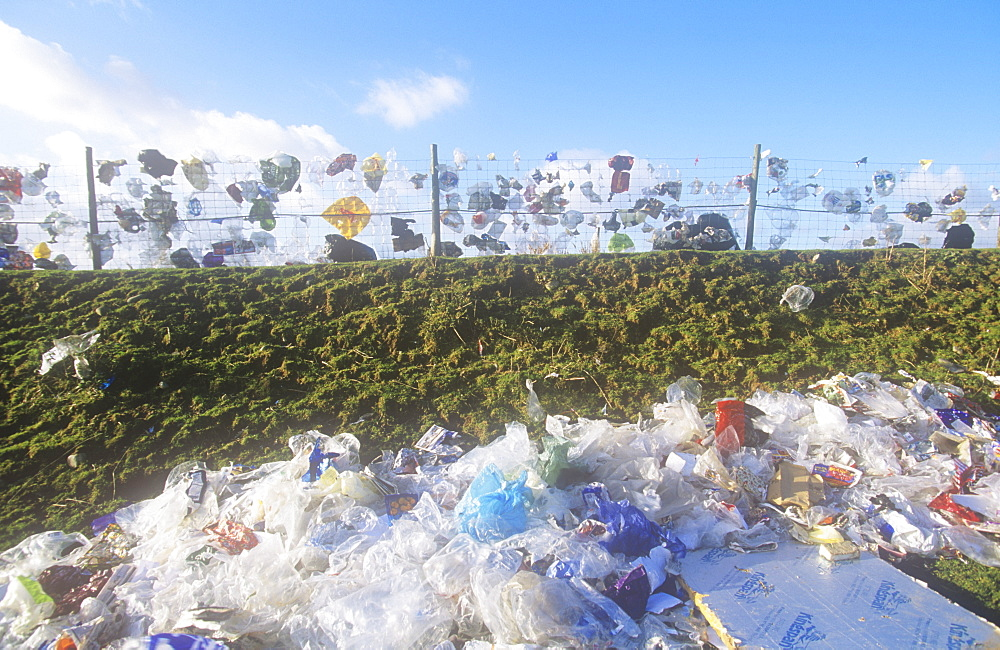Plastic bags and packaging blown from a landfill site in Barrow in Furness, Cumbria, England, United Kingdom, Europe