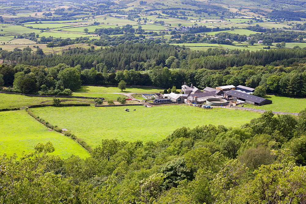 Barrowfield Farm underneath Scout Scar on the outskirts of Kendal, looking towards the Lake District mountains, Cumbria, England, United Kingdom, Europe
