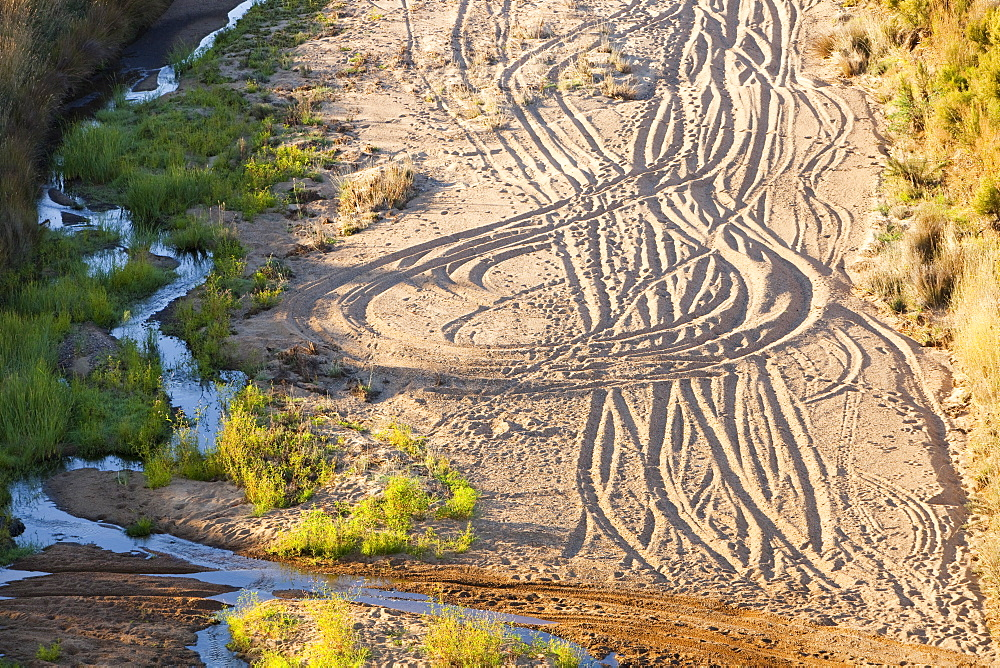 Off road vehicle tracks at Lake Eildon after an uprecedented ten years of drought, with only 29 percent capacity, Victoria, Australia, Pacific