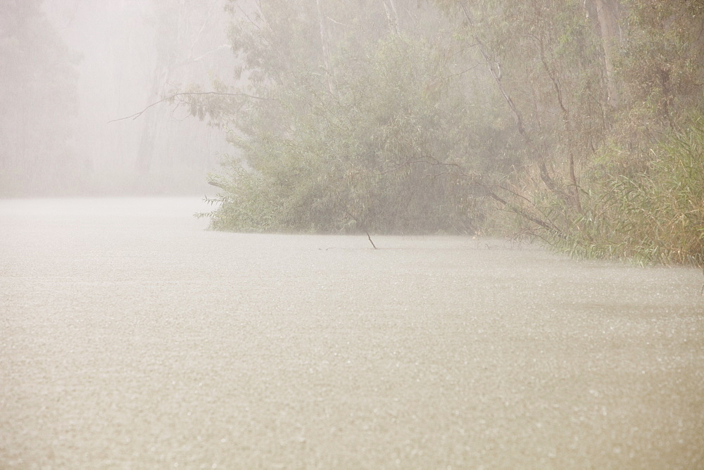 A torrential downpour on the Murray River near Echuca, Victoria, Australia, Pacific