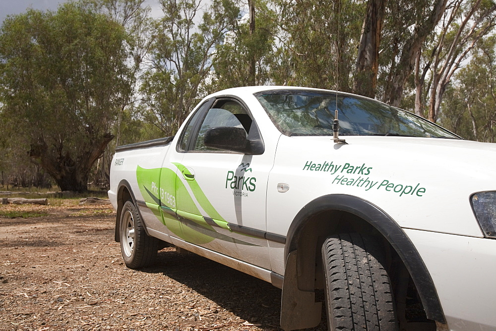Ranger's pick-up int he Barmah Forest, Victoria, Australia, Pacific