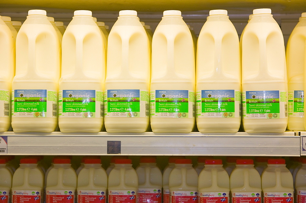 Organic milk for sale on supermarket shelves, Cumbria, England, United Kingdom, Europe