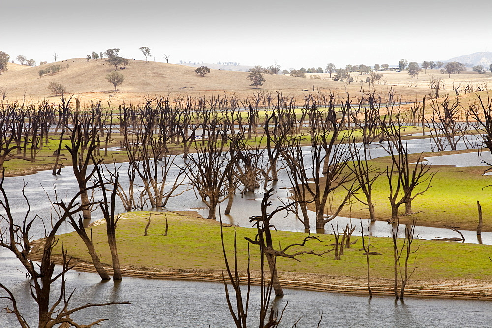 Lake Hume, the largest reservoir in Australia, at under 20% capacity after severe drought, Australia, Pacific - 911-5903