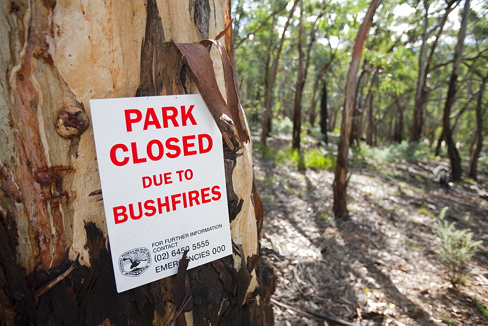 A park in the Snowy mountains closed due to bush fires, New South Wales, Australia, Pacific - 911-6026