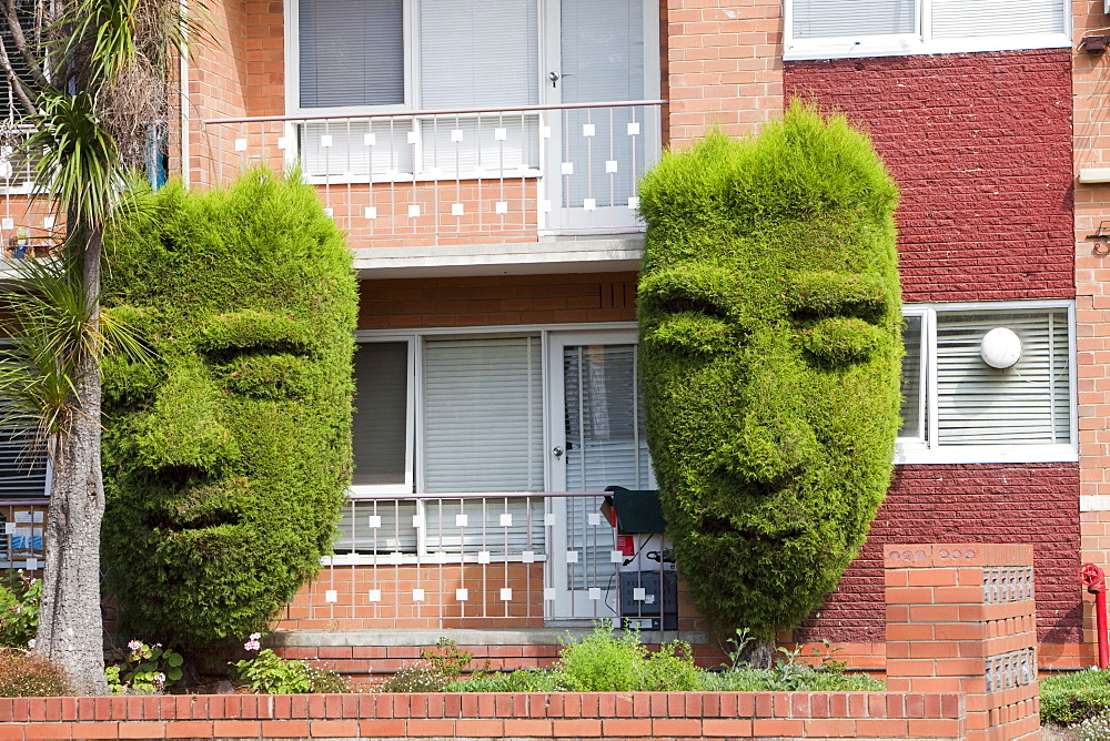 Topiary trees outside a block of flats in Hawthorn, Melbourne, Victoria, Australia, Pacific