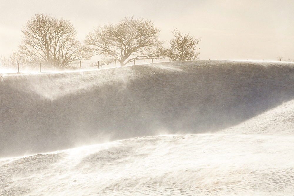 A field in Troutbeck with snow and spindrift being blown across the hill side, Lake District, Cumbria, England, United Kingdom, Europe