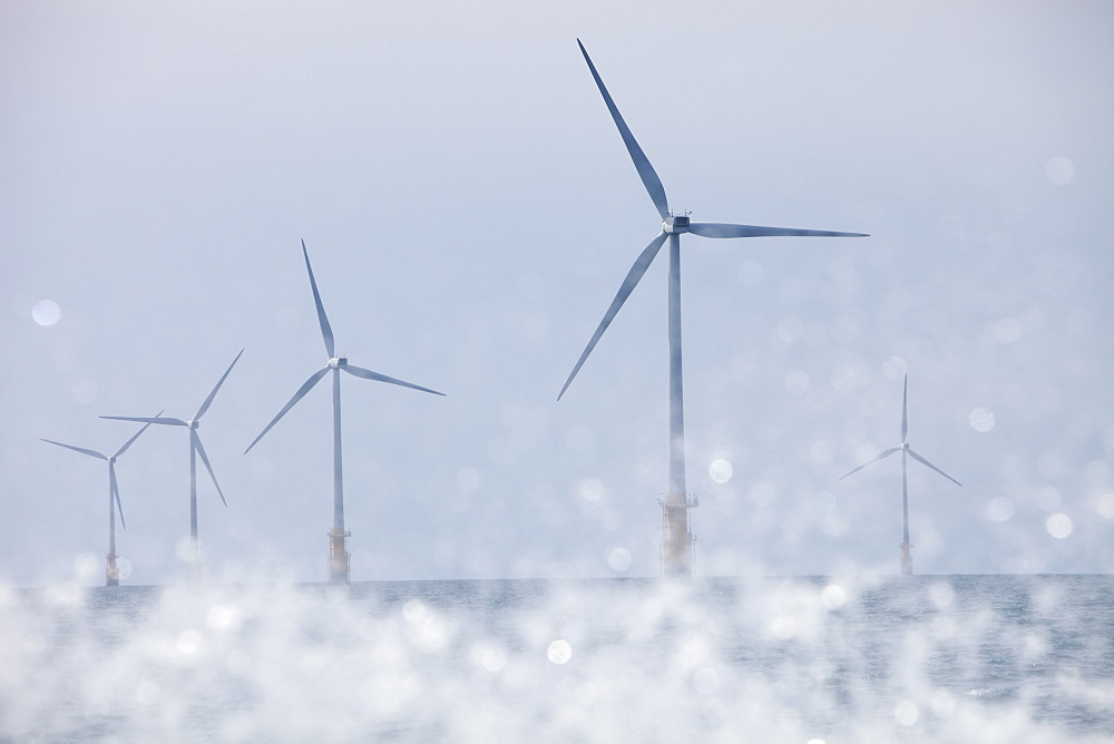 An offshore wind farm off Walney Island, Barrow in Furness, Cumbria, England, United Kingdom, Europe