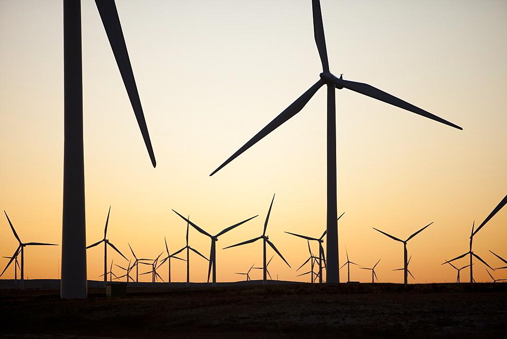 Dawn over Whitlee wind farm on Eaglesham Moor just south of Glasgow in Scotland, United Kingdom, Europe