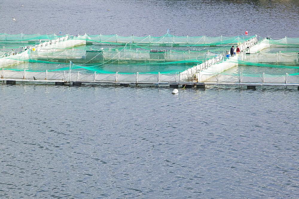 Salmon farm at Drumbeg in Assynt, Sutherland, Highlands, Scotland, United Kingdom, Europe