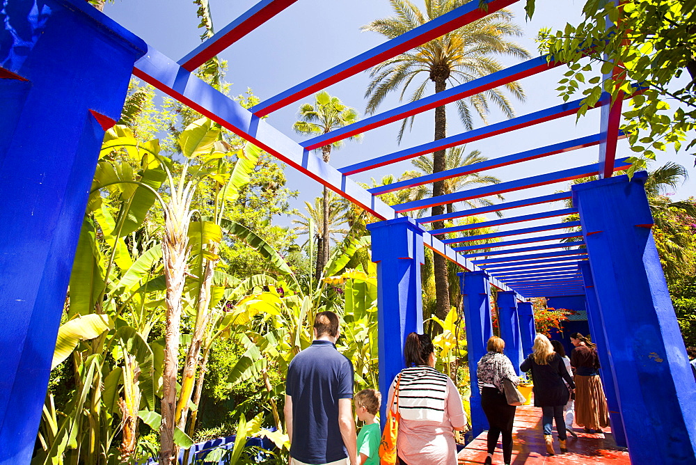 The Marjorelle Gardens in Marrakech, Morocco, North Africa, Africa
