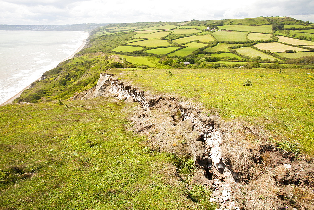 A tear in the ground showing where the next landslip will take place on the South West Coast Path near Charmouth, Jurassic Coast, UNESCO World Heritage Site, Dorset, England, United Kingdom, Europe