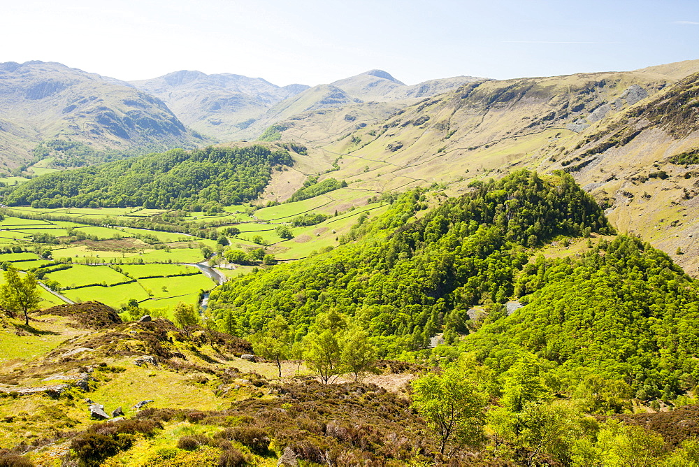 Looking down into the Borrowdale Valley near Keswick from Kings How, Lake District, Cumbria, England, United Kingdom, Europe
