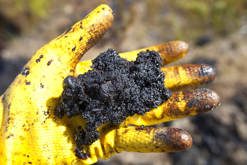 A hand full of tar sand, Alberta, Canada, North America