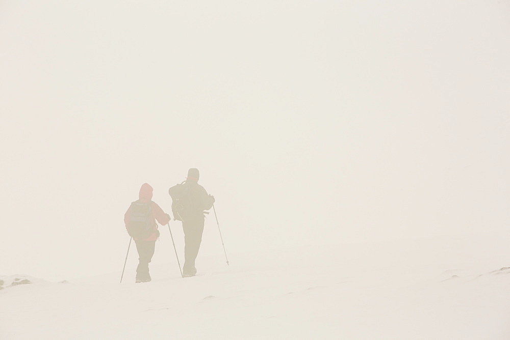 Walkers on Helvellyn in poor visibility, Lake District, Cumbria, England, United Kingdom, Europe