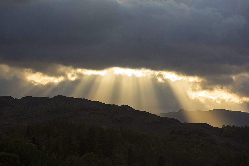 Jacobs Ladders, shafts of sunlight streaming through gaps in the cloud in the evening, over Loughrigg Fell in the Lake District National Park, Cumbria, England, United Kingdom, Europe