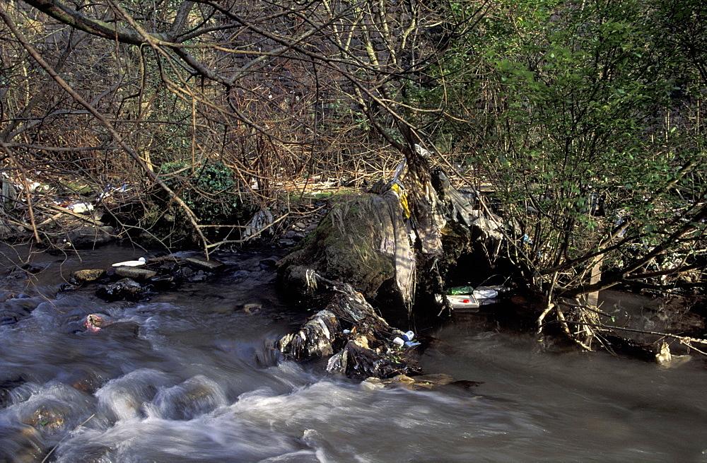 Plastic debris trapped in riverside branches, Afon Llynfi, Caerau Wales      (rr)