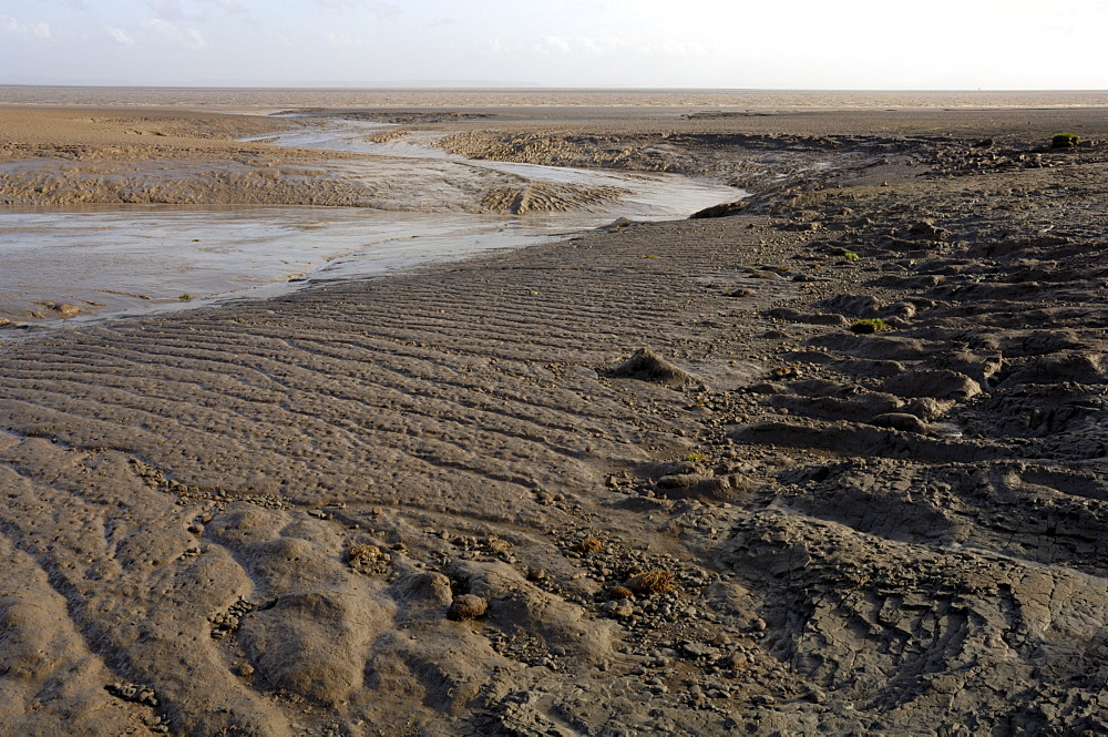 Goldcliff Pill mudflat, Goldcliff, Gwent Levels, Newport, Wales, UK, Europe