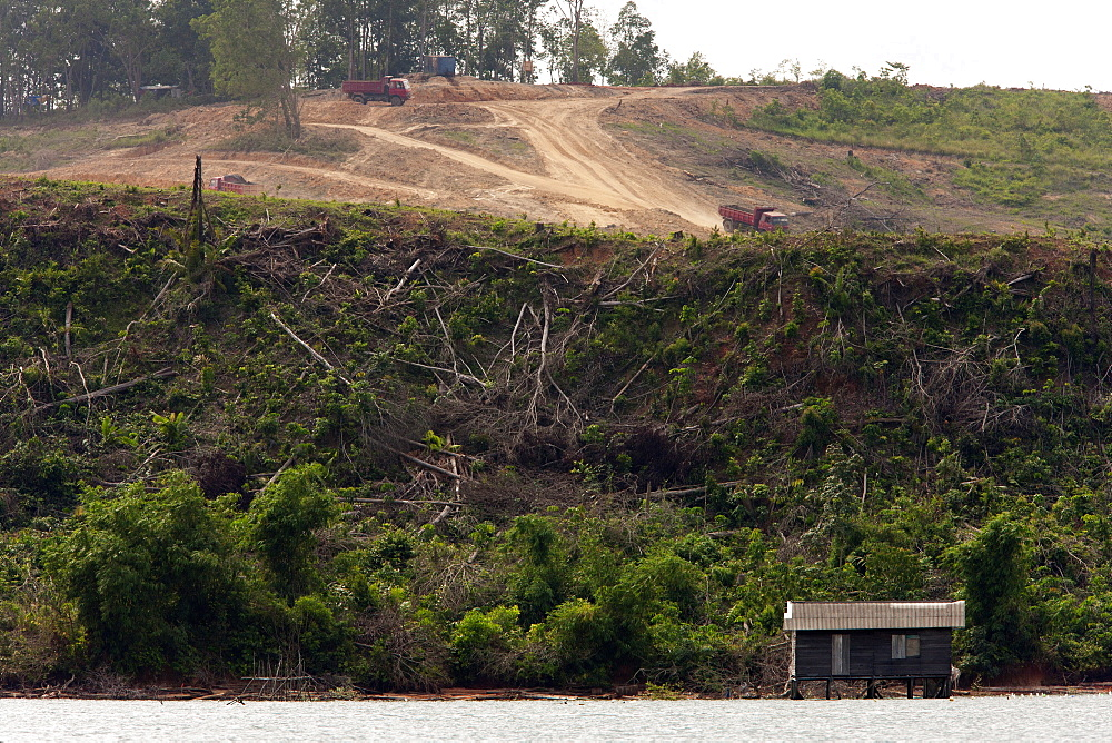 Mangrove and forest destruction, Balikpapan Bay, East Kalimantan, Borneo, Indonesia, Southeast Asia, Asia