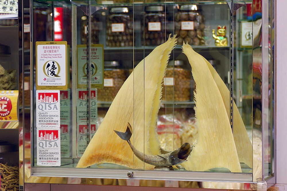 Dried shark fins for sale in traditional chinese medicine store, Hong Kong, China, Asia