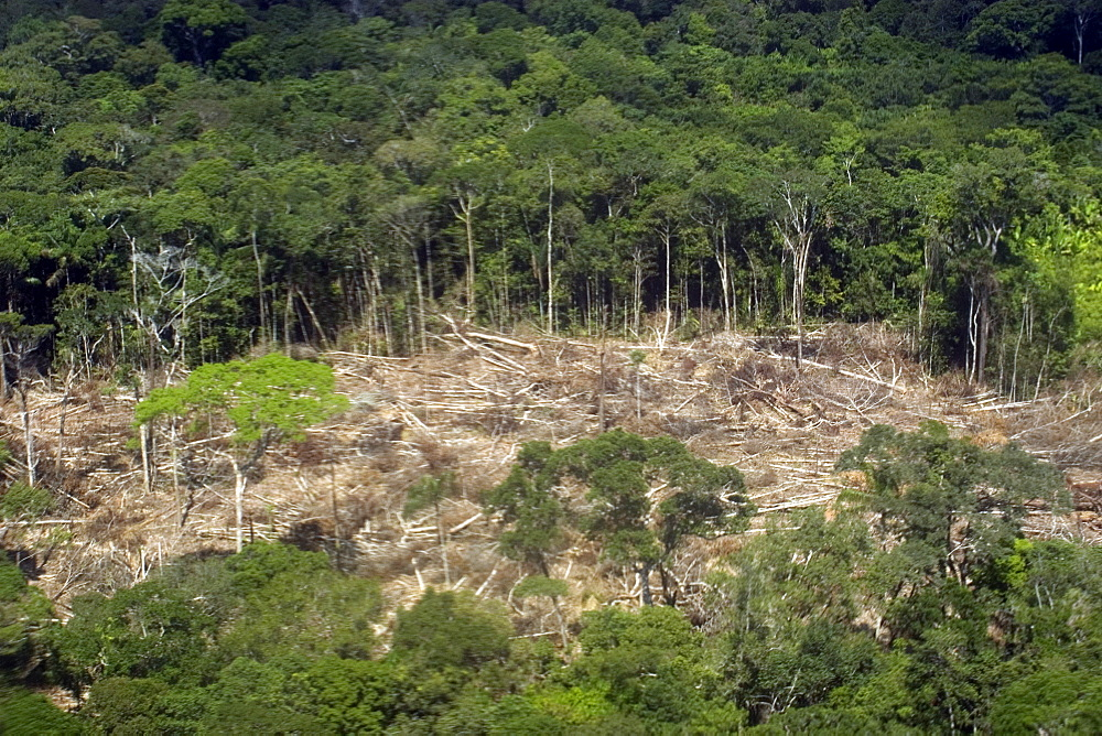 Aerial view of patch of destroyed rain forest, Amazonas, Brazil, South America - 920-1880