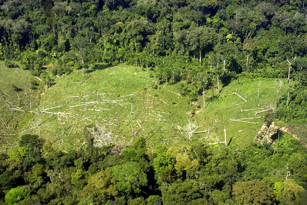 Aerial view of patch of destroyed rain forest, Amazonas, Brazil, South America - 920-1882