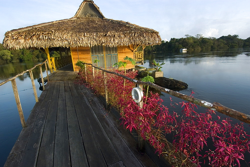 Uakari Floating Lodge, Mamiraua sustainable development reserve, Amazonas, Brazil, South America - 920-2049