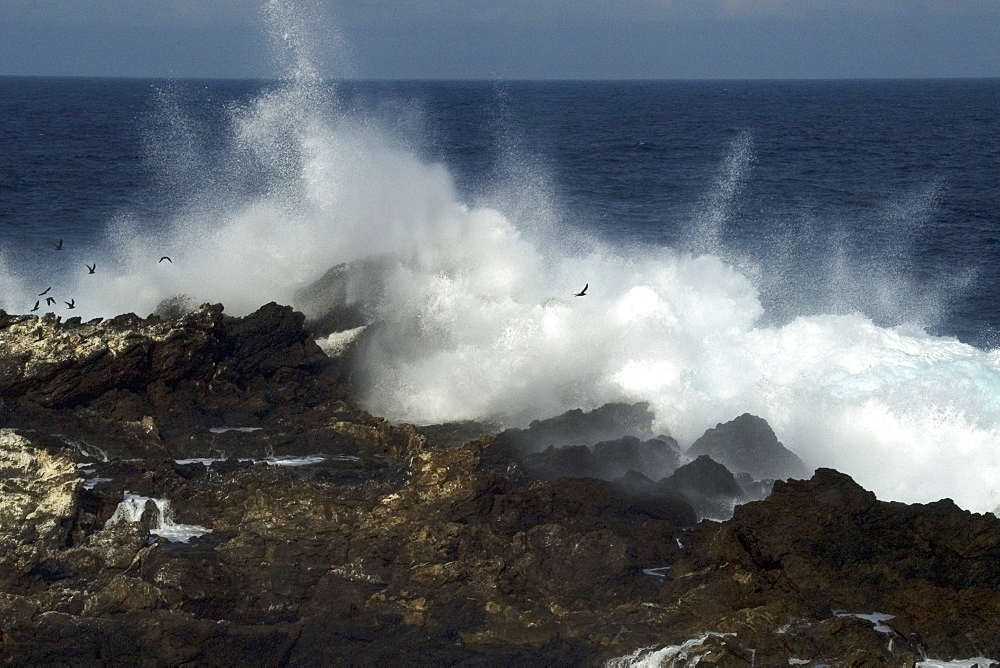 Wave crashing over rocks,  St. Peter and St. Paul's rocks, Brazil, South America - 920-2065