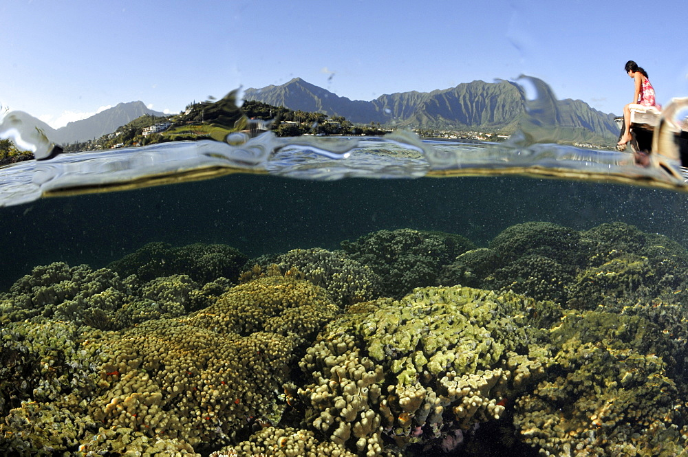Split image of woman at the pier observing hard coral formations and the Koolau mountains in the background, Kaneohe Bay, Oahu, Hawaii, United States of America, Pacific