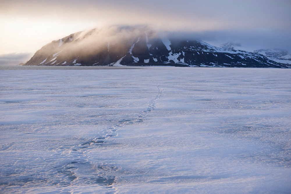 Pack Ice, Sheet Ice, Arctic. Longyearbyen, Svalbard, Norway