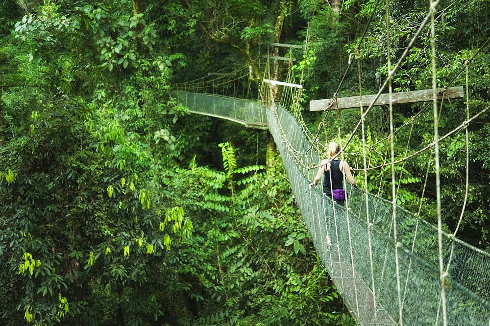 Single Female on Canopy Sky Walk, Mulu National Park, Sarawak, Borneo, Malaysia