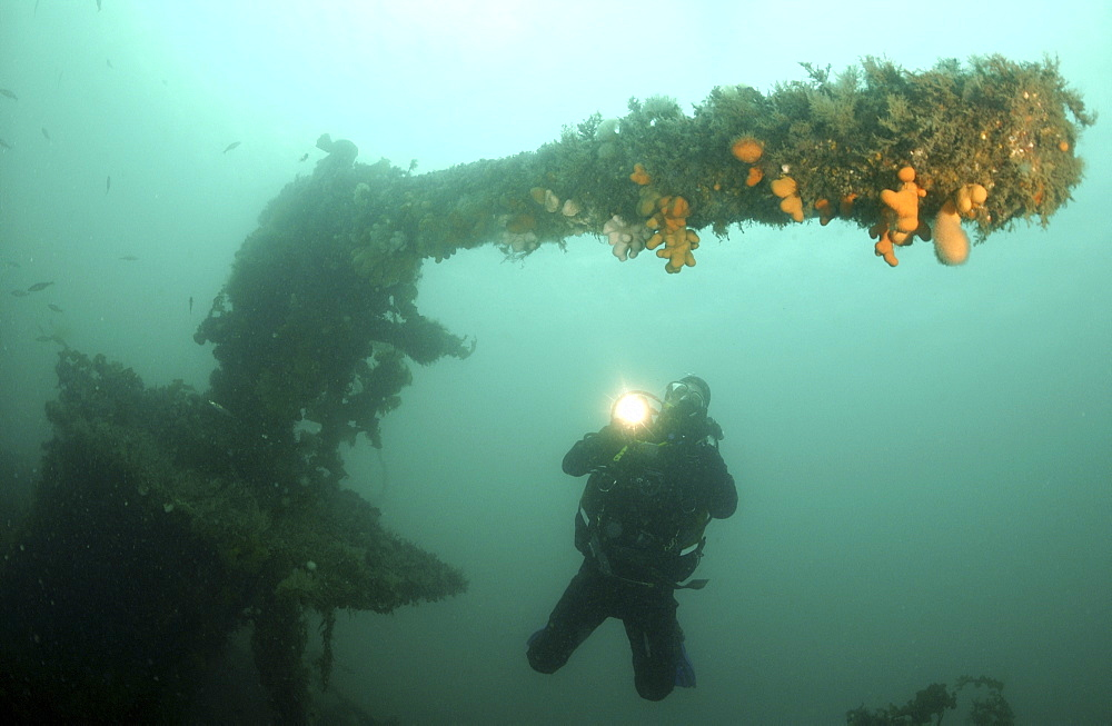 divers enjoying wreck diving in Barbados, Caribbean