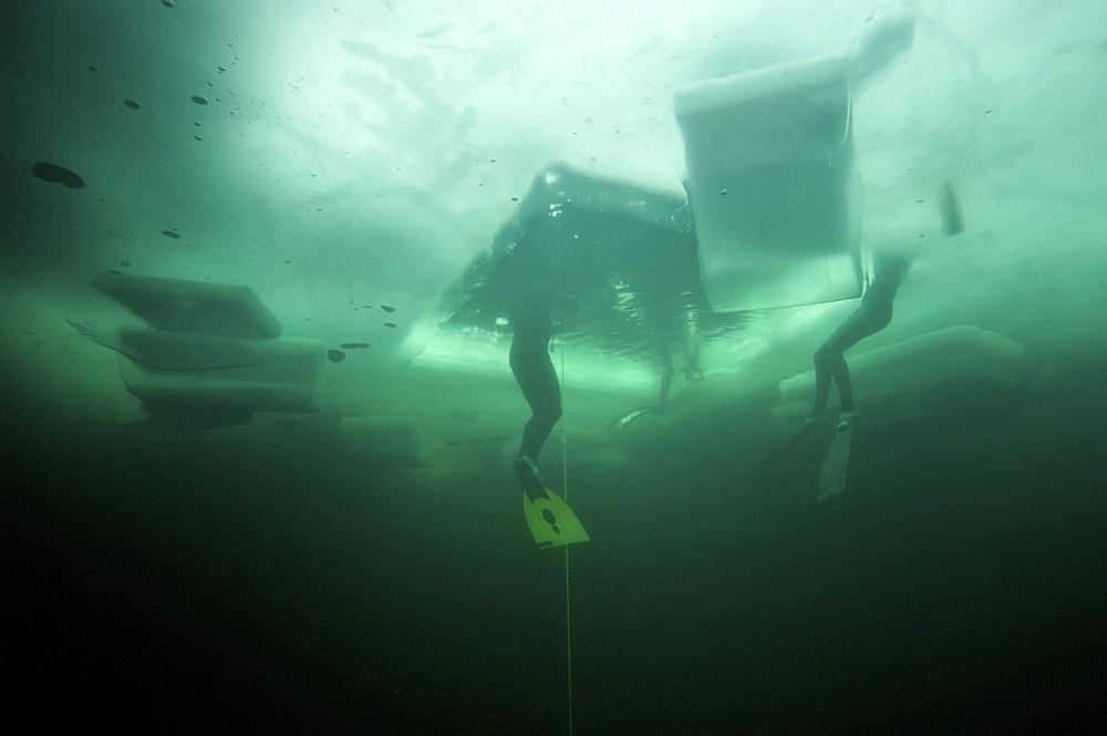 freedivers in the Oslo Ice Challenge 2009. Oslo, Norway