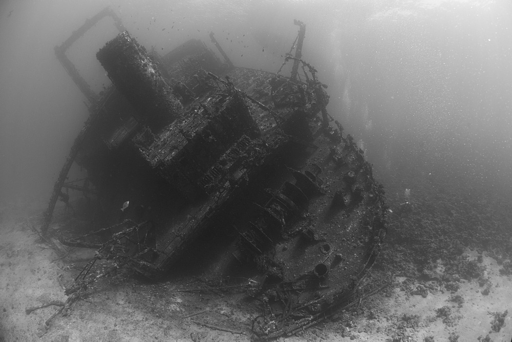 Diving the wreck of The Giannis D, Red Sea, Egypt, North Africa, Africa - 934-686