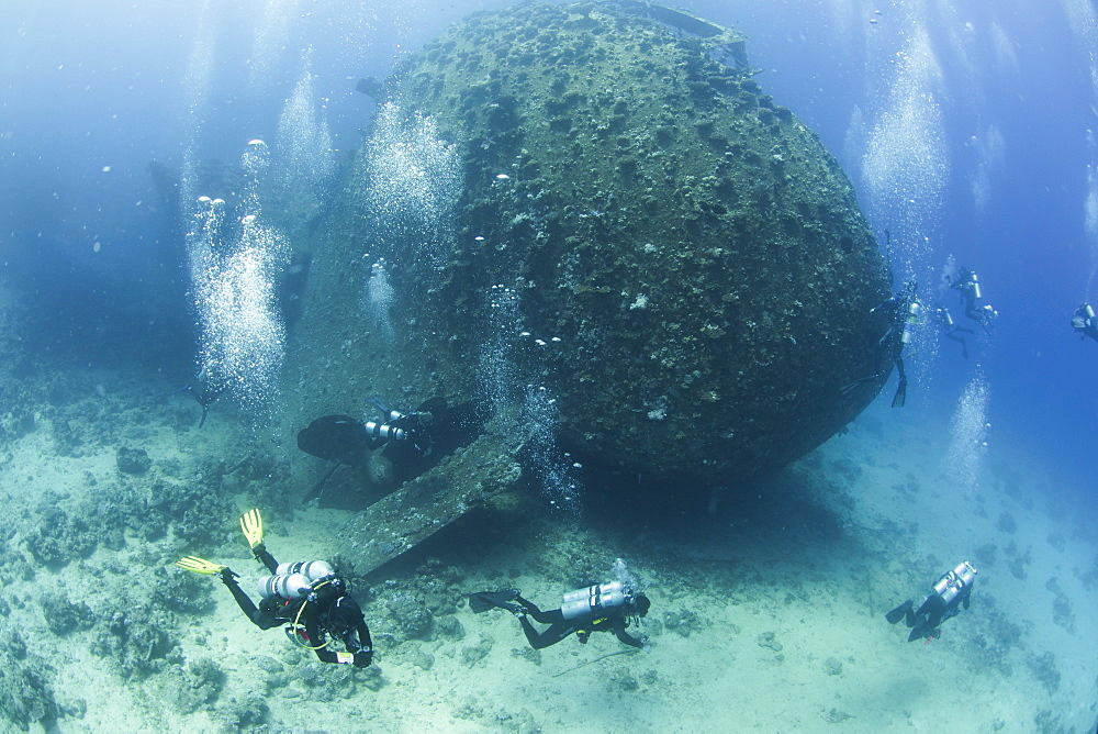 Diving the wreck of The Giannis D, Red Sea, Egypt, North Africa, Africa - 934-688