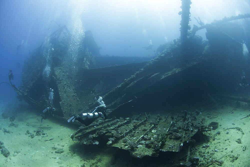 Diving the wreck of The Giannis D, Red Sea, Egypt, North Africa, Africa - 934-689